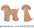 Toy Poodle Dog Set Illustration 63629258