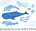 Sea creature illustration set (hand-painted, watercolor style) 63637046