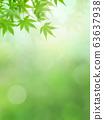 배경 - 일본 - 일본식 - 일본식 디자인 - 일본 - 봄 - 초여름 - 여름 - 단풍 - 그린 63637938