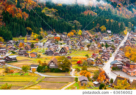 •The village of Shirakawa, a world heritage site, with its traditional houses with gassho-zukuri-style roofs  from the belvedere in daylight in autumn 63656002