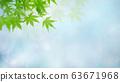 Background-Japanese-Japanese-Japanese pattern-Japan-Spring-Early summer-Summer-Autumn leaves-Light blue 63671968
