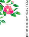 camellia 63674422
