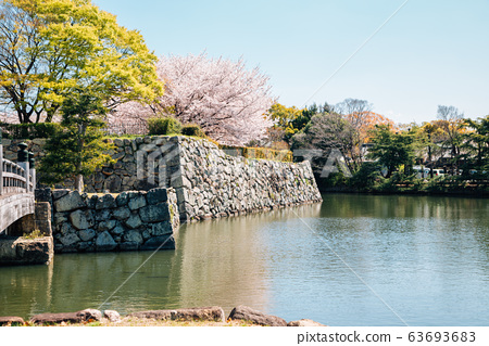 Himeji Castle park, canal and cherry blossoms at spring in Japan 63693683