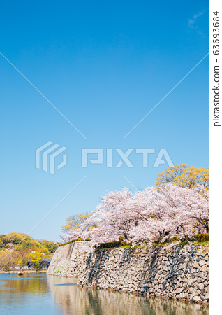 Himeji Castle park, canal and cherry blossoms at spring in Japan 63693684