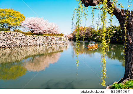 Old boat on the canal with spring cherry blossoms at Himeji Castle in Japan 63694367
