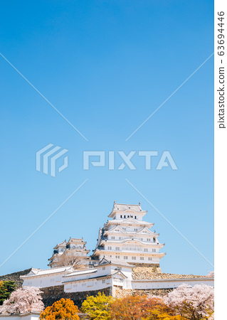 Himeji Castle with cherry blossoms at spring in Japan 63694446