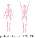 骨架粉紅色單色的插圖 63700192