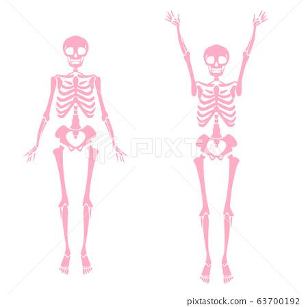 Illustration of the skeleton pink single color 63700192