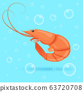Cute shrimp on blue background with bubbles. 63720708