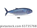 fresh tuna fish isolated on white background seafood concept horizontal 63735768