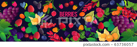 set fresh juicy berries composition healthy natural food concept horizontal copy space 63736057