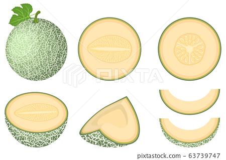 Set of fresh whole, half, cut slice melon fruit 63739747