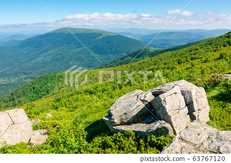 beautiful summer landscape in mountains. green 63767120