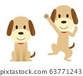 สัตว์เลี้ยงสุนัข座ท่ากระโดดกล้านั่งก่อให้เกิด 63771243