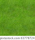 Seamless Green Lush Grass Texture 63778724