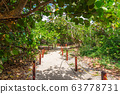 White sand pathway to the beach 63778731
