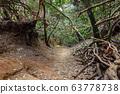Anaga Natural Park Pathway 63778738