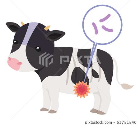 Johne's disease _ cow _ illustration 63781840