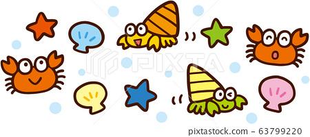 海邊生物 63799220