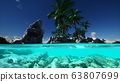 Split view cross section of sea water and palm 63807699