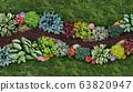 Gardening 63820947