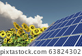 Solar panel and sunflowers 63824302