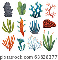 Set of watercolor seaweed and corals isolated on white background. Underwater algae. Aquarium plants collection. Vector marine life. Vector isolated corals and algae. Underwater flora 63828377