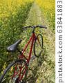 紅色的自行車和油菜田 63841883