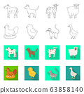 Vector design of breeding and kitchen sign. Collection of breeding and organic stock vector illustration. 63858140