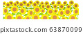 Sunflower field white background 63870099