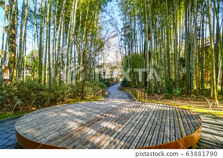 Shuzenji small path of bamboo forest 63881790