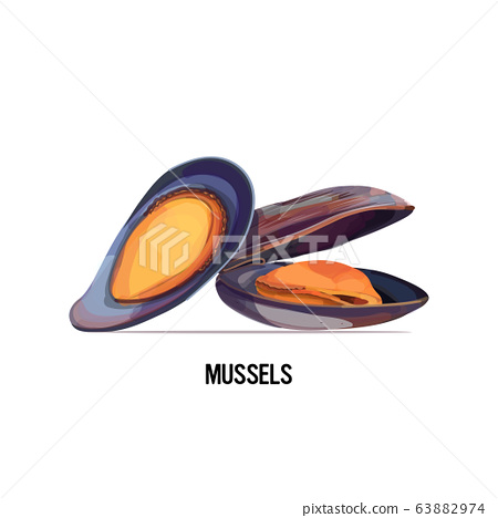 delicious seafood mussels in shell isolated on white background 63882974