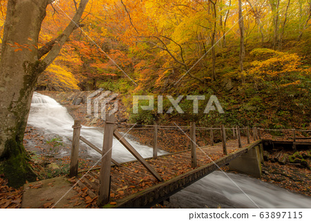 Hiking trail in Autumn , Fukushima Prefecture with 63897115