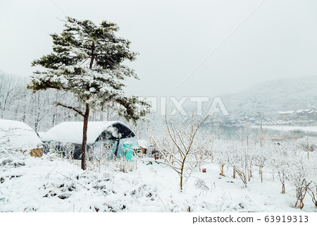Snow-covered greenhouse and lake in winter 63919313