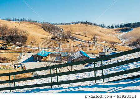 Dry grass field and mountain and snow and winter landscape in Daegwallyeong sheep ranch, Pyeongchang, Korea 63923311