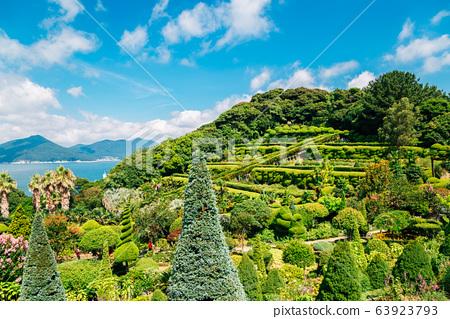 Oedo-Botania island, garden scenery at summer day in Geoje, Korea 63923793