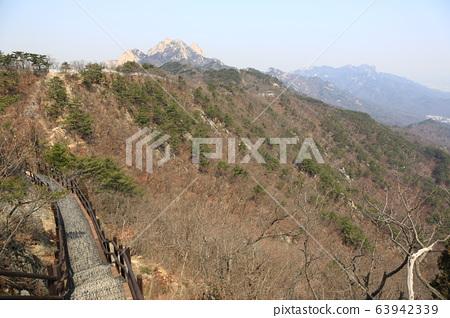 北漢山國家公園樹山 63942339
