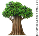 Realistic fairy old oak tree in vector 63963114