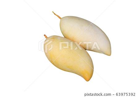 Golden mango fruit isolated on white background. 63975392