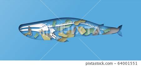 Paper cut whale skeleton x ray water pollution 64001551