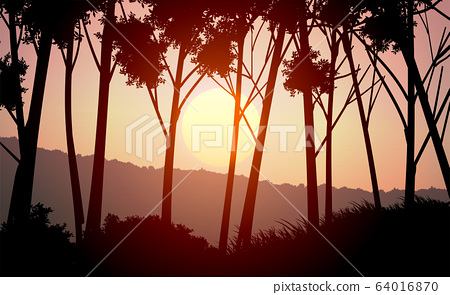 Natural forest mountains horizon hills silhouettes of trees. Evening Sunrise and sunset. Landscape wallpaper. Illustration vector style. Colorful view background. 64016870