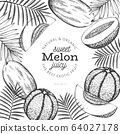 Whole melon and a pieces of melon design template. 64027178