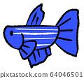 거부 선이있는 메스베타 (파란색) 64046501