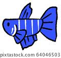 결혼 선이있는 메스베타 (파란색) 64046503
