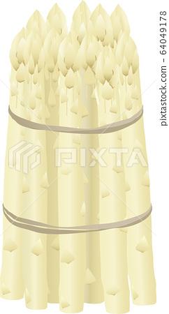 White asparagus 64049178