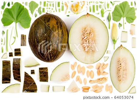 Piel de Sapo Melon Collection Abstract 64053074