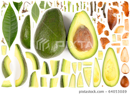 Avocado Slice and Leaf Collection 64053089