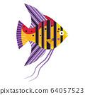 Tropical Funny Aquarium Fish Icon in Flat 64057523