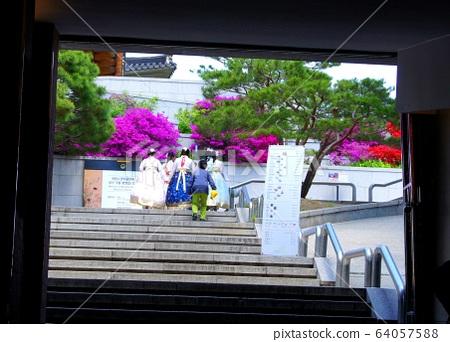 韓國首爾街頭拍攝 64057588