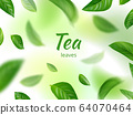 Green leaves background. Flowing of natural green herbs eco concept flying realistic leaves vector 64070464